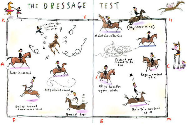 The dressage tes