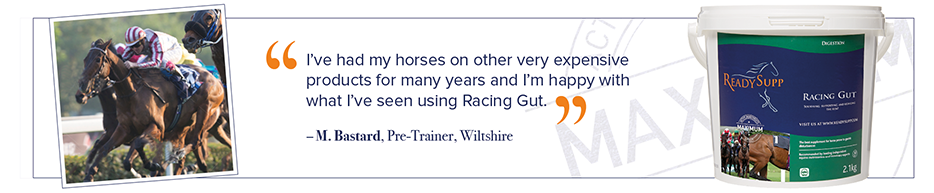 Racing Gut Customer Testimonial