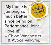 Jockey Quote